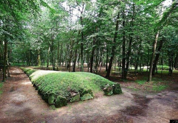 В Польше нашли древние поселения строителей, создавших загадочные пирамиды (фото)
