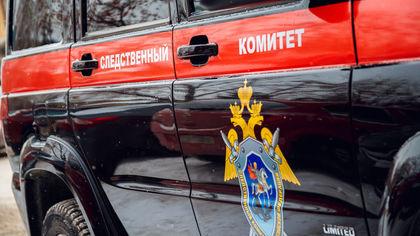 Новосибирский СК завел дело о разврате на учительницу из-за видео со стриптизом